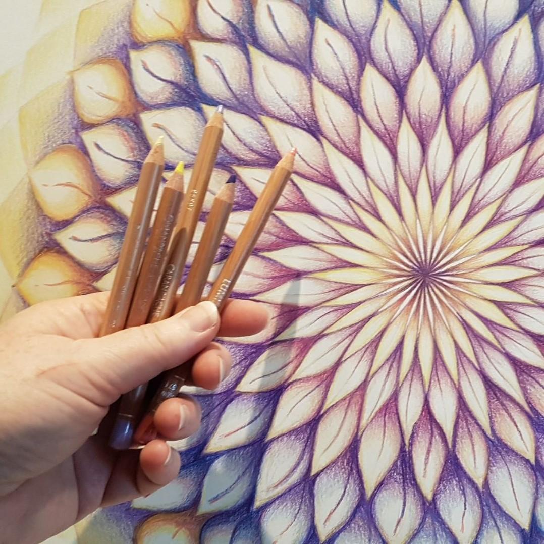 Bronkracht blog: Reis door de chakra's, leidraad voor transformatie
