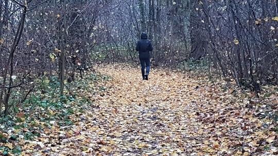 bronkracht getuigenis van Wandelcoaching, een meerwaarde